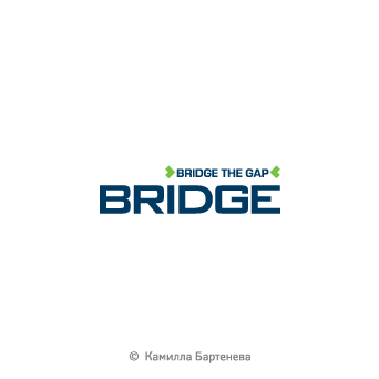 Bridge. Тренигновая компания.