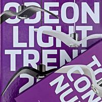 Декоративные светильники Odeon Light. Каталог 746 полос