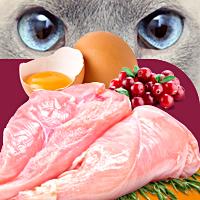 Lapico ТМ и упаковка серии кормов для животных 22 SKU