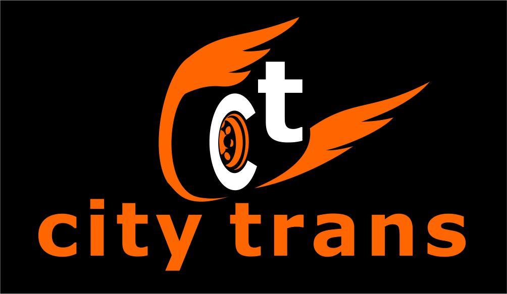 Разработка Логотипа транспортной компании фото f_3095e6f9d0377e8d.jpg
