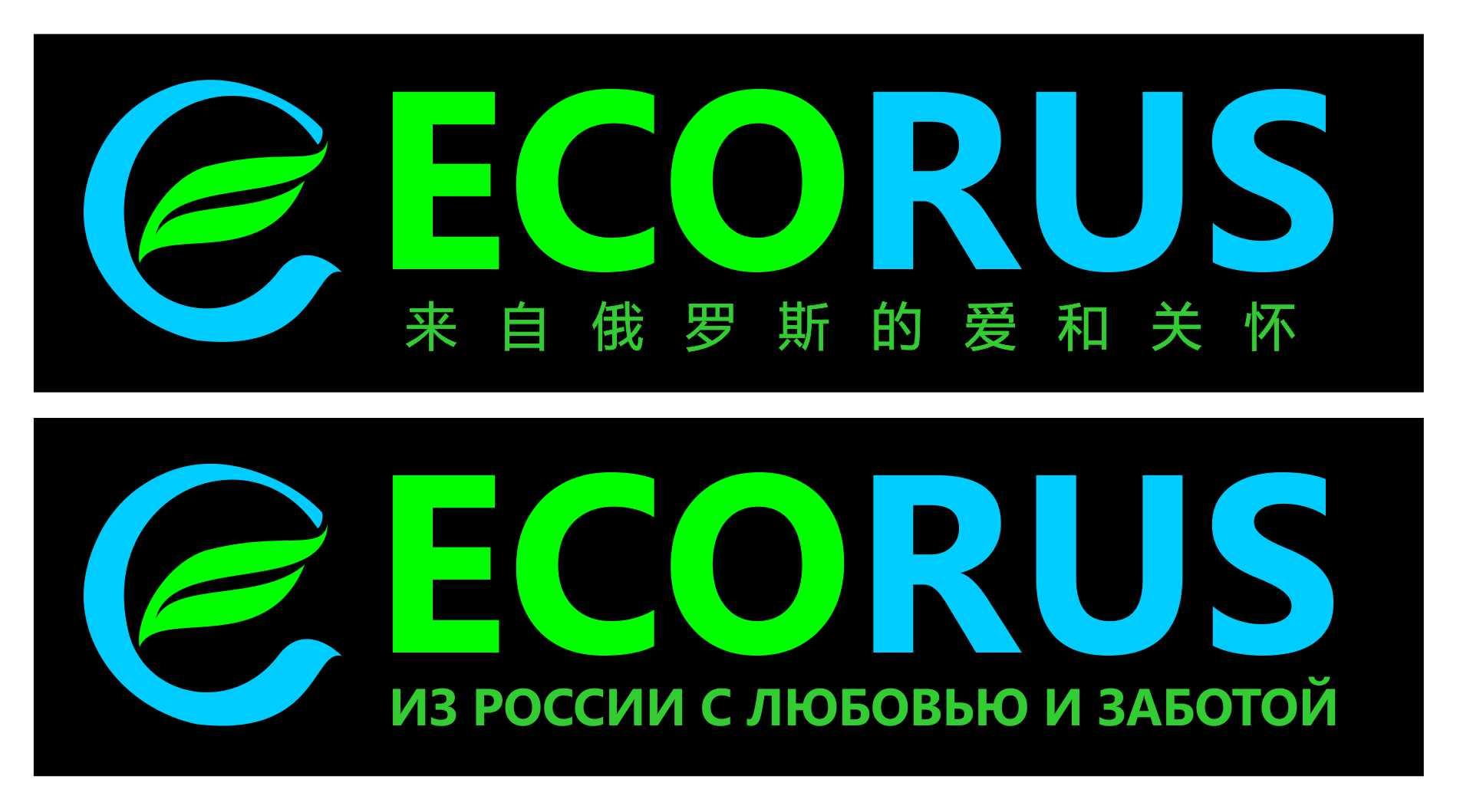 Логотип для поставщика продуктов питания из России в Китай фото f_6115eb339e2ca839.jpg