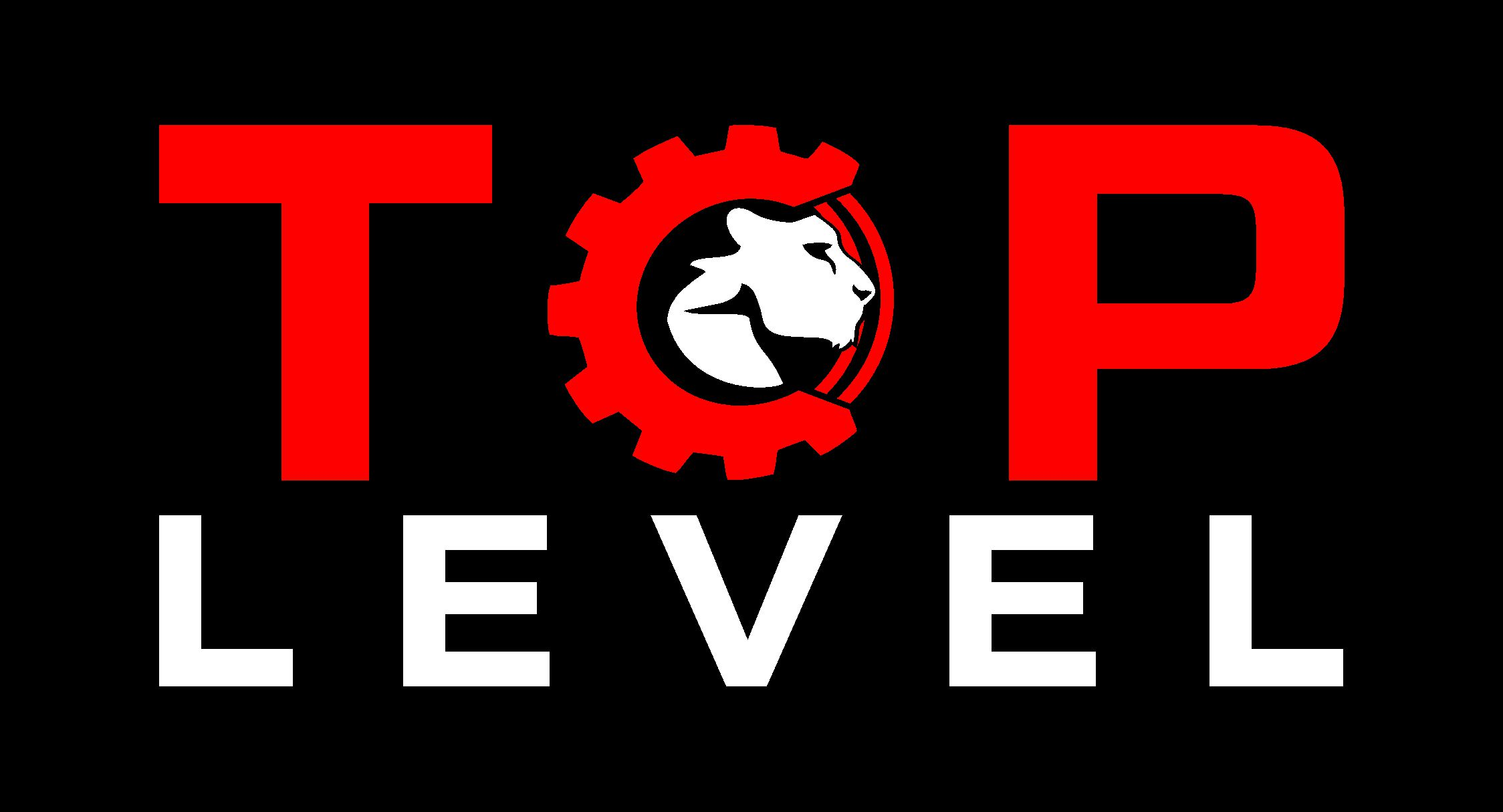 Разработка логотипа для тюнинг ателье фото f_6425f32ff6d98d67.jpg