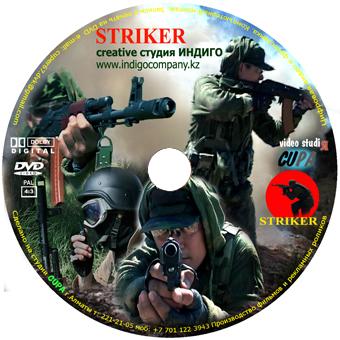 DVD страйкбольная игра Striker