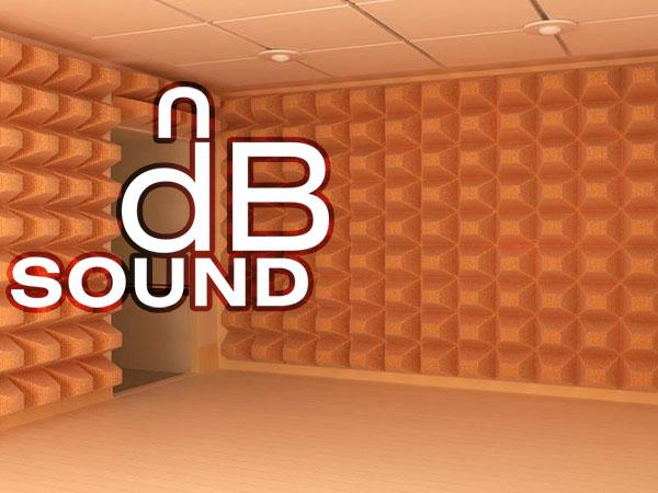 Создание логотипа для компании dB Sound фото f_26059bbbf767eedf.jpg