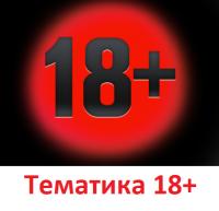 Тематика 18+ (сайты досуга, игрушки для взрослых, интим салоны, сексуальные игры)
