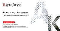 """Сертификат специалиста по работе с системой """"Яндекс.Директ"""" - 2016-17 год"""