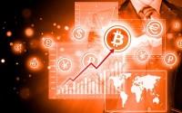 Обзор источников криптовалютных сигналов