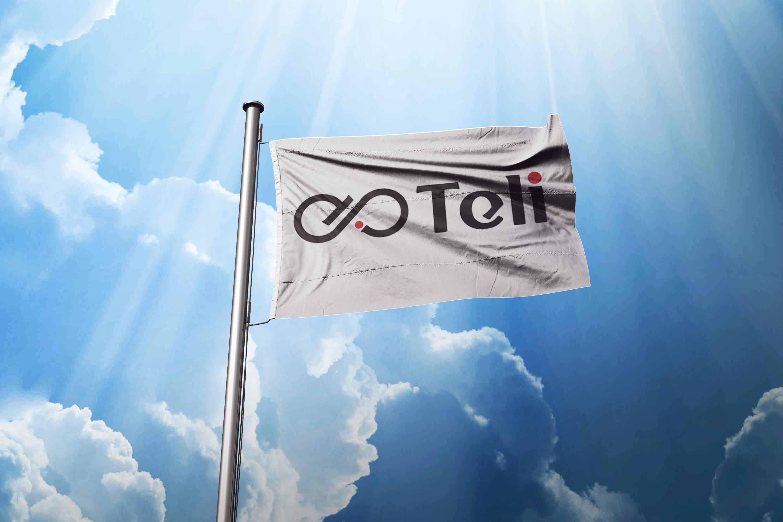 Разработка логотипа и фирменного стиля фото f_99758fbb20029ceb.jpg