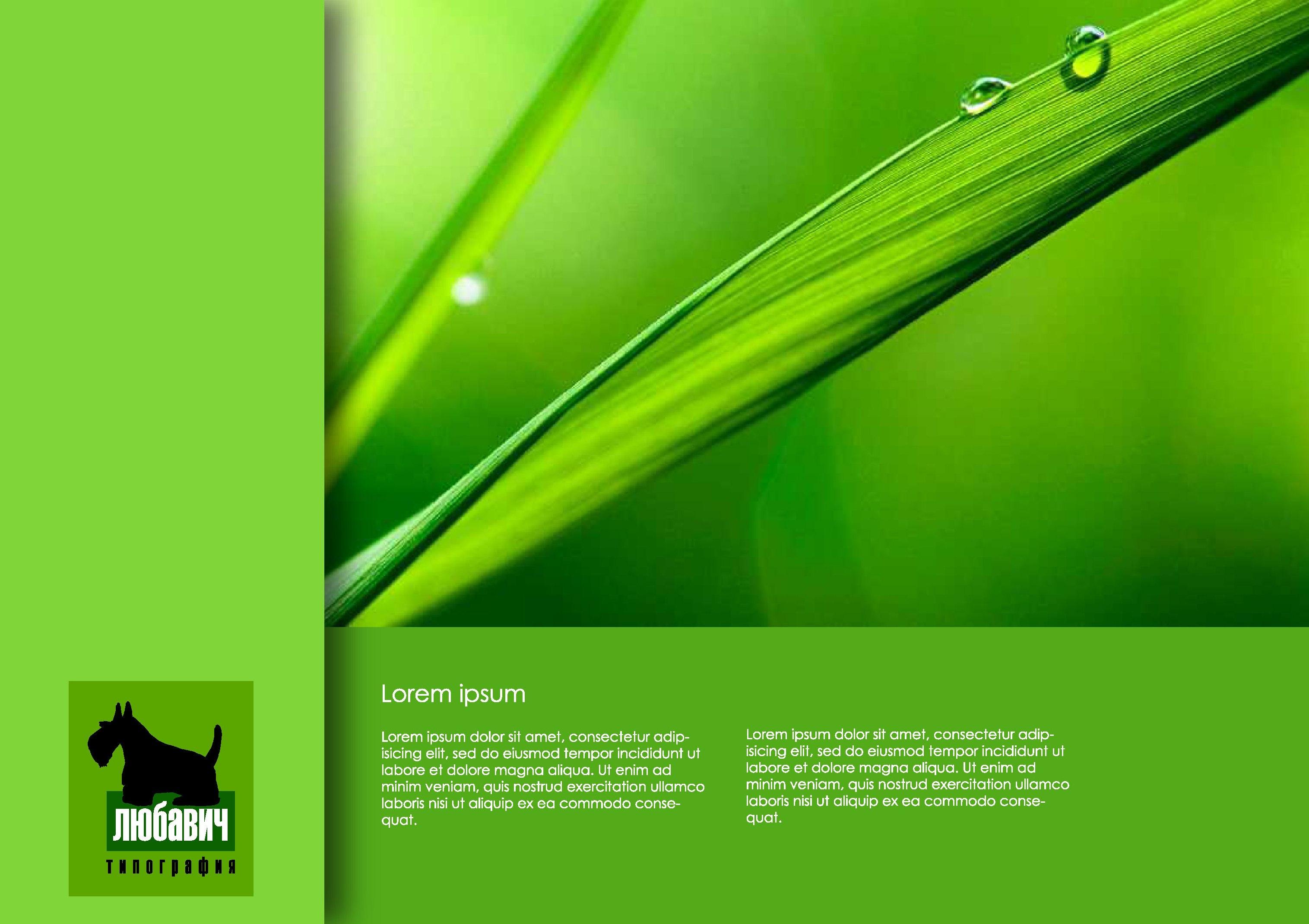 Дизайн рекламной брошюры возможностей типографии фото f_024564f0a667b788.jpg