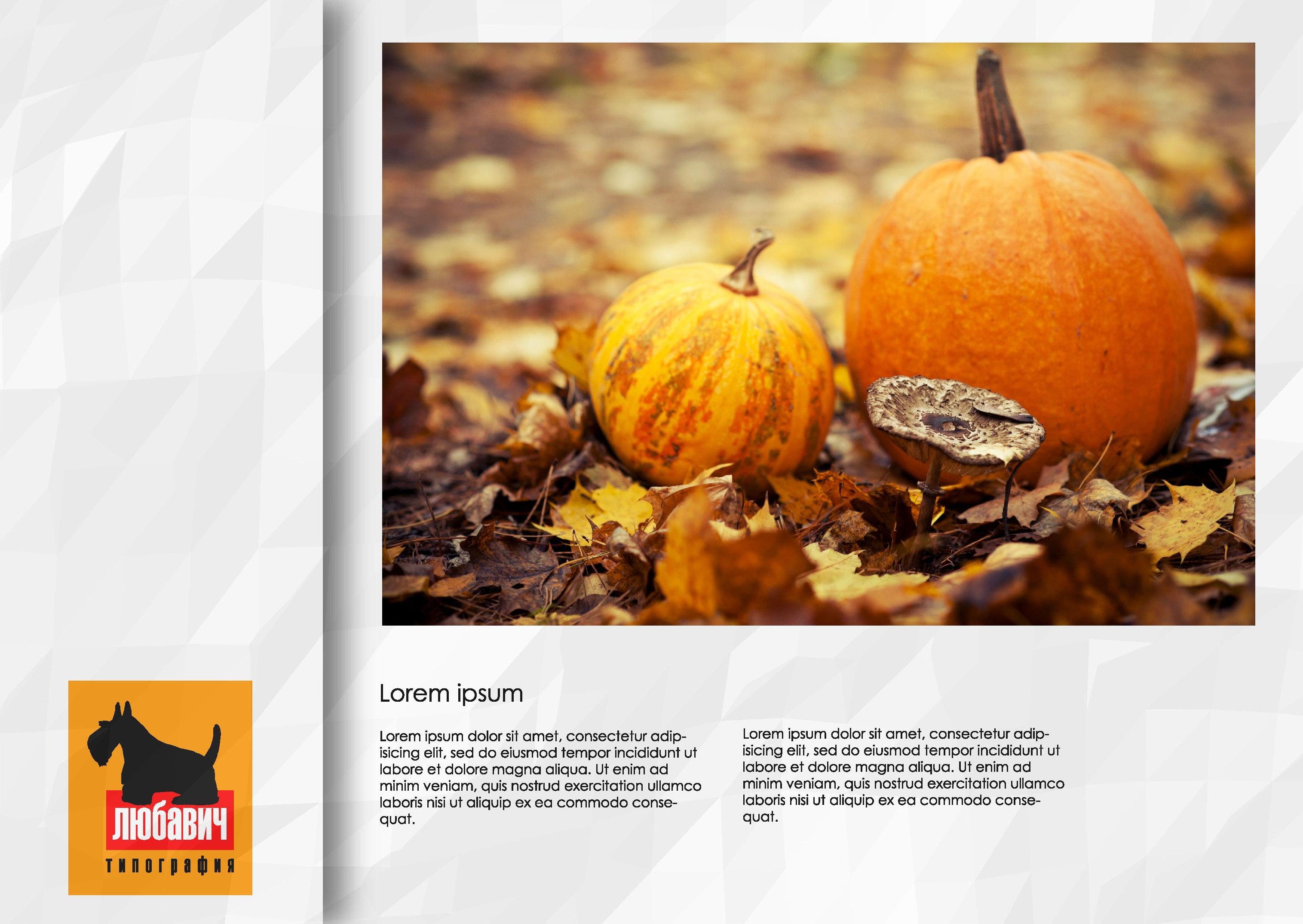 Дизайн рекламной брошюры возможностей типографии фото f_328564f0a9c80705.jpg