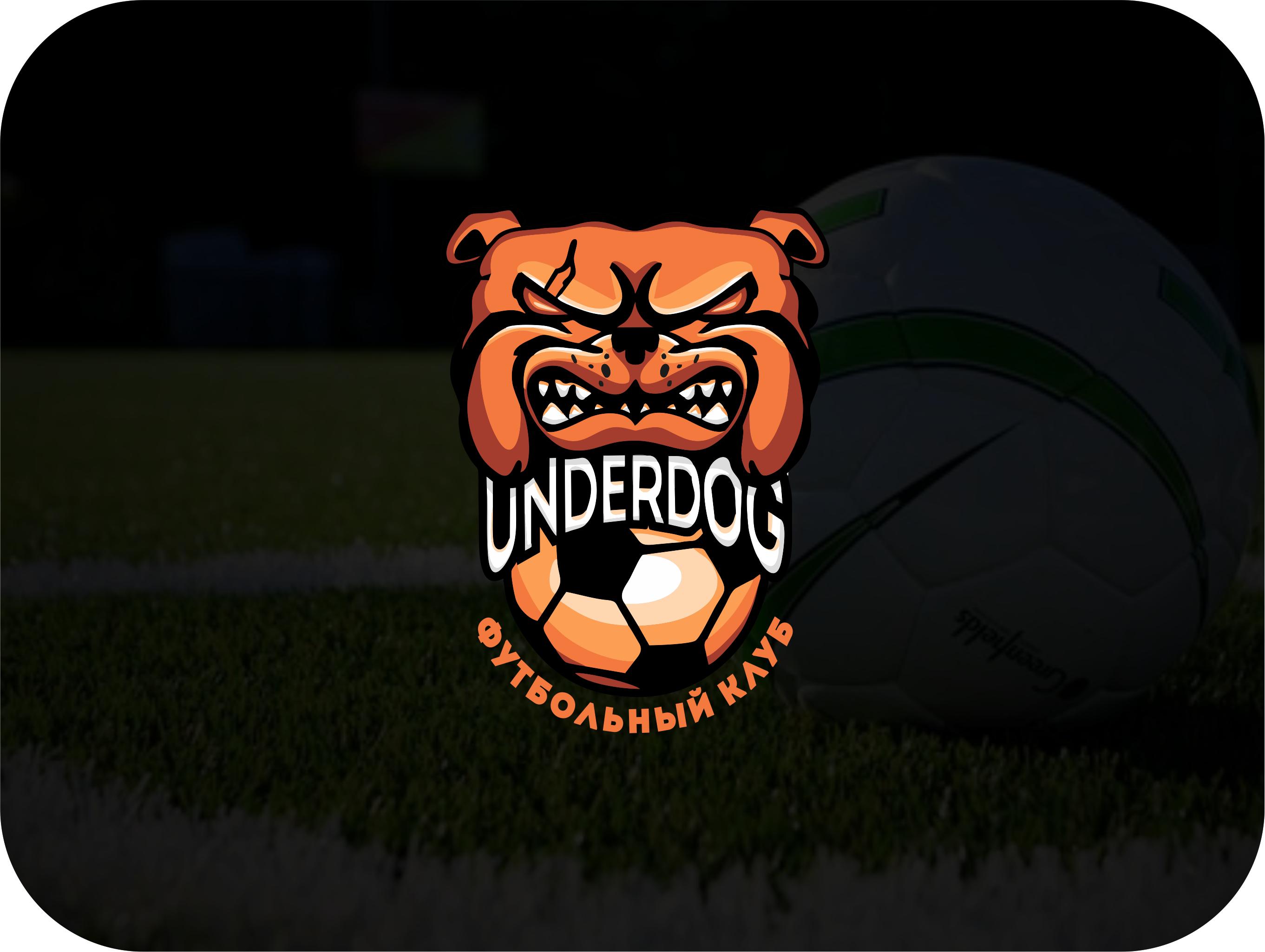 Футбольный клуб UNDERDOG - разработать фирстиль и бренд-бук фото f_0455cb0d0d523616.jpg