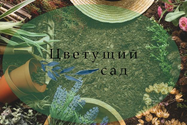 """Логотип для компании """"Цветущий сад"""" фото f_3595b6825550c681.jpg"""