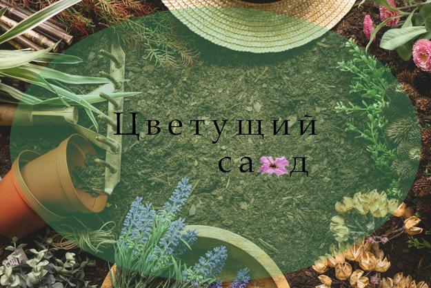 """Логотип для компании """"Цветущий сад"""" фото f_9545b6823c79938f.jpg"""