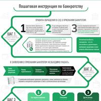Инфографика инструкция по банкротству
