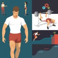 Иллюстрации для спортивного приложения (группы мыщц, упражнения)