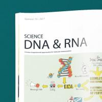 ДНК и РНК, иллюстрации в виде инфографики в научный журнал