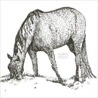 Лошадка в стиле гравюры