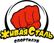 sportclub-realsteel.ru