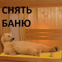 Снять баню - ТОП-3 Яндекс + Google [Москва]