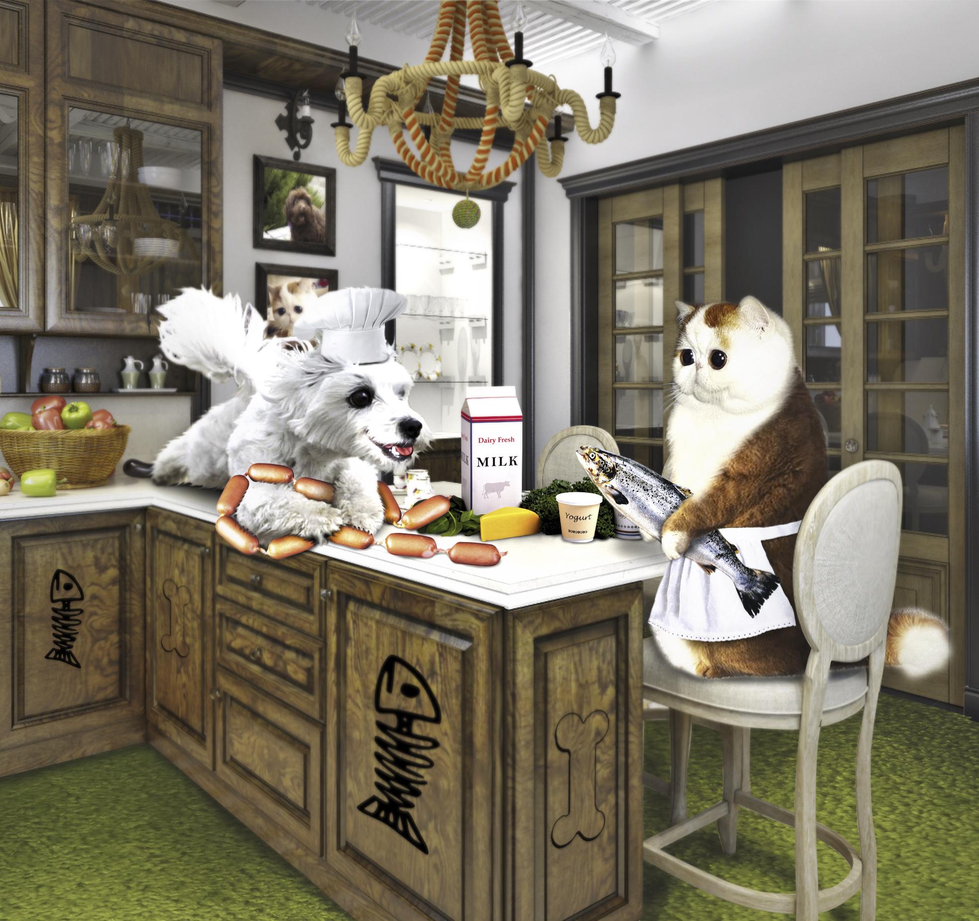 Создать интересный коллаж с участием животных фото f_34751de79f512062.jpg