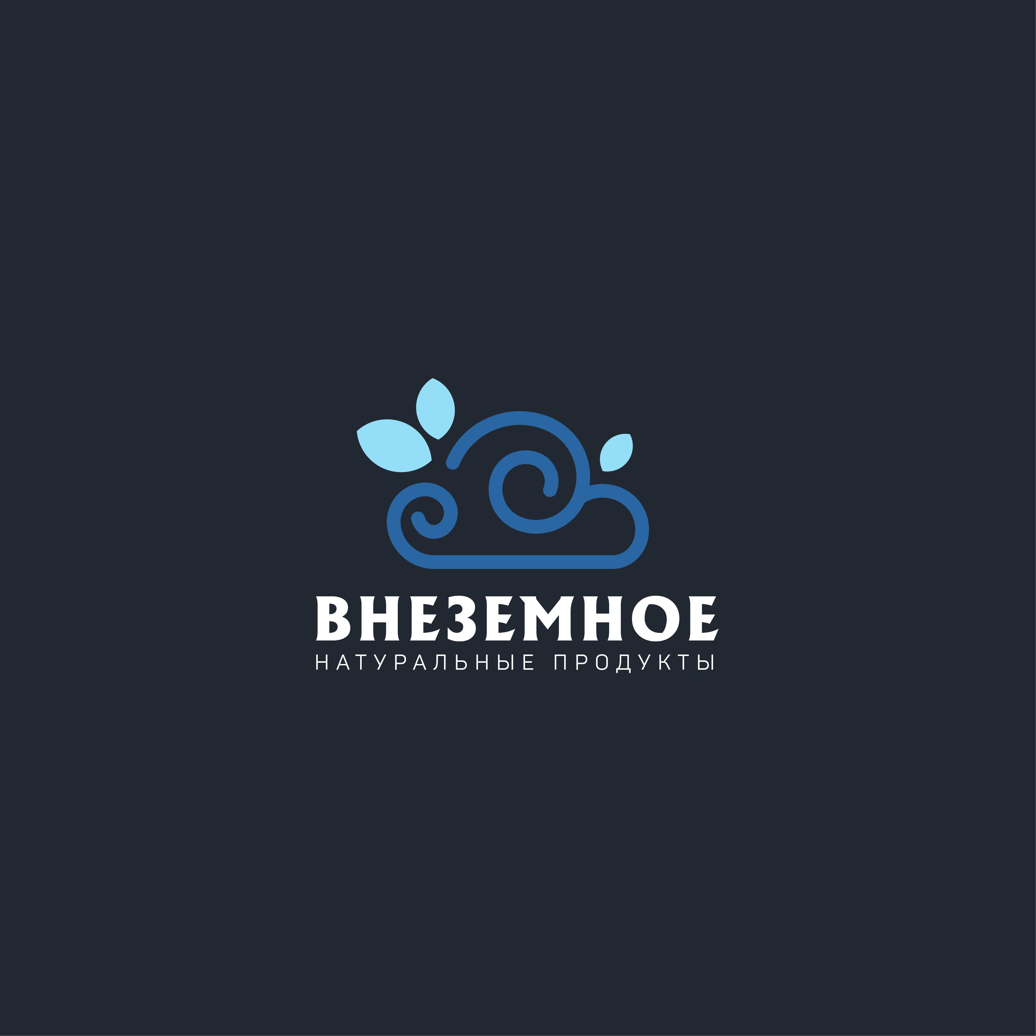 """Логотип и фирменный стиль """"Внеземное"""" фото f_0845e74872e13f4d.jpg"""
