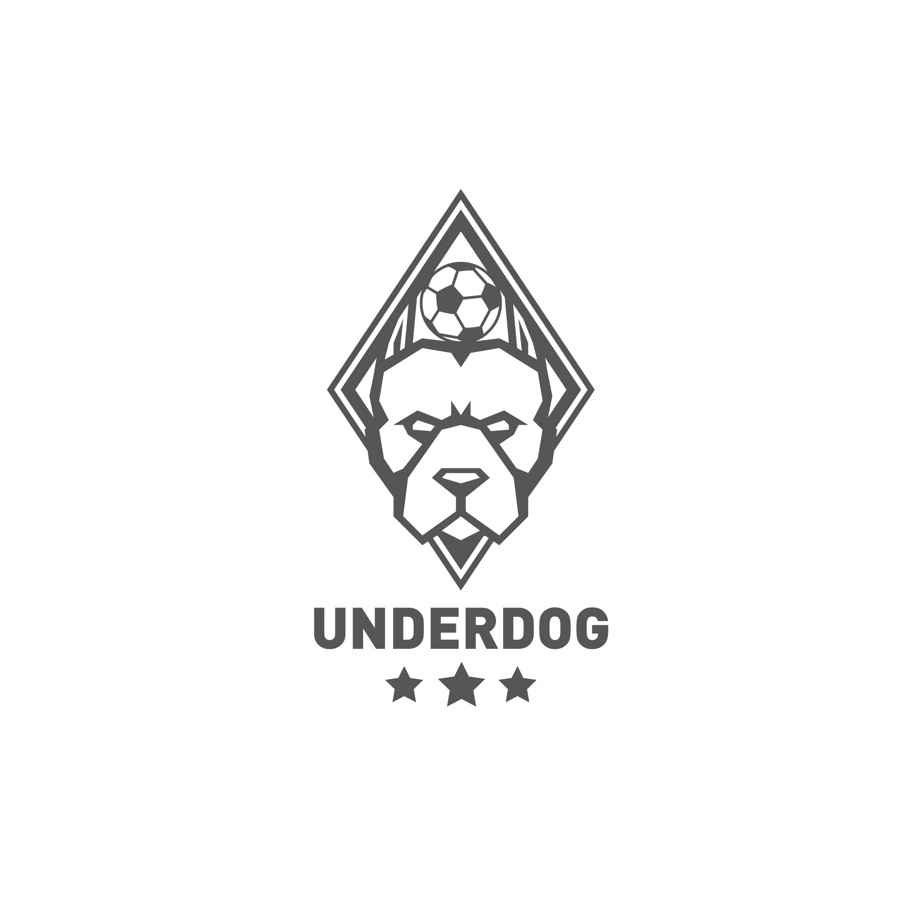 Футбольный клуб UNDERDOG - разработать фирстиль и бренд-бук фото f_4675caf5a4a32d69.jpg