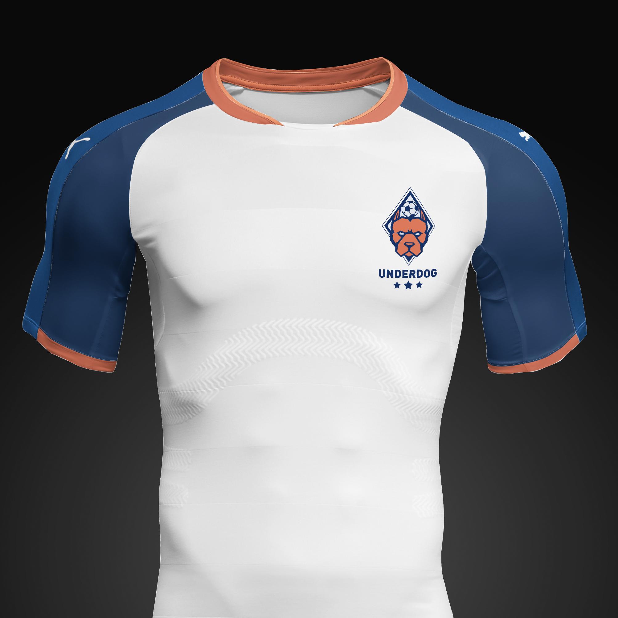 Футбольный клуб UNDERDOG - разработать фирстиль и бренд-бук фото f_8325caf5a543b720.jpg