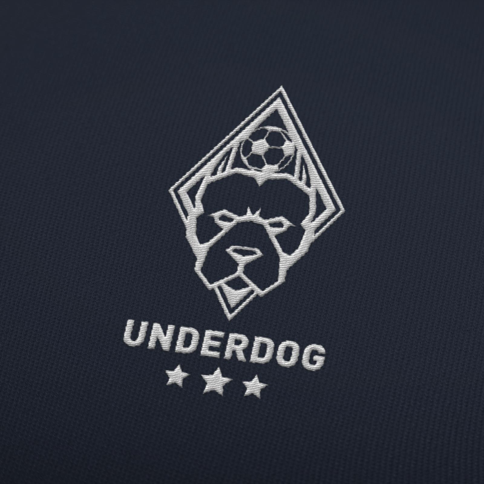 Футбольный клуб UNDERDOG - разработать фирстиль и бренд-бук фото f_9475caf5a4d78599.jpg