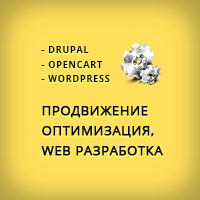 Web разработка, оптимизация, продвижение