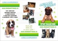 Буклет для сайта о домашних животных
