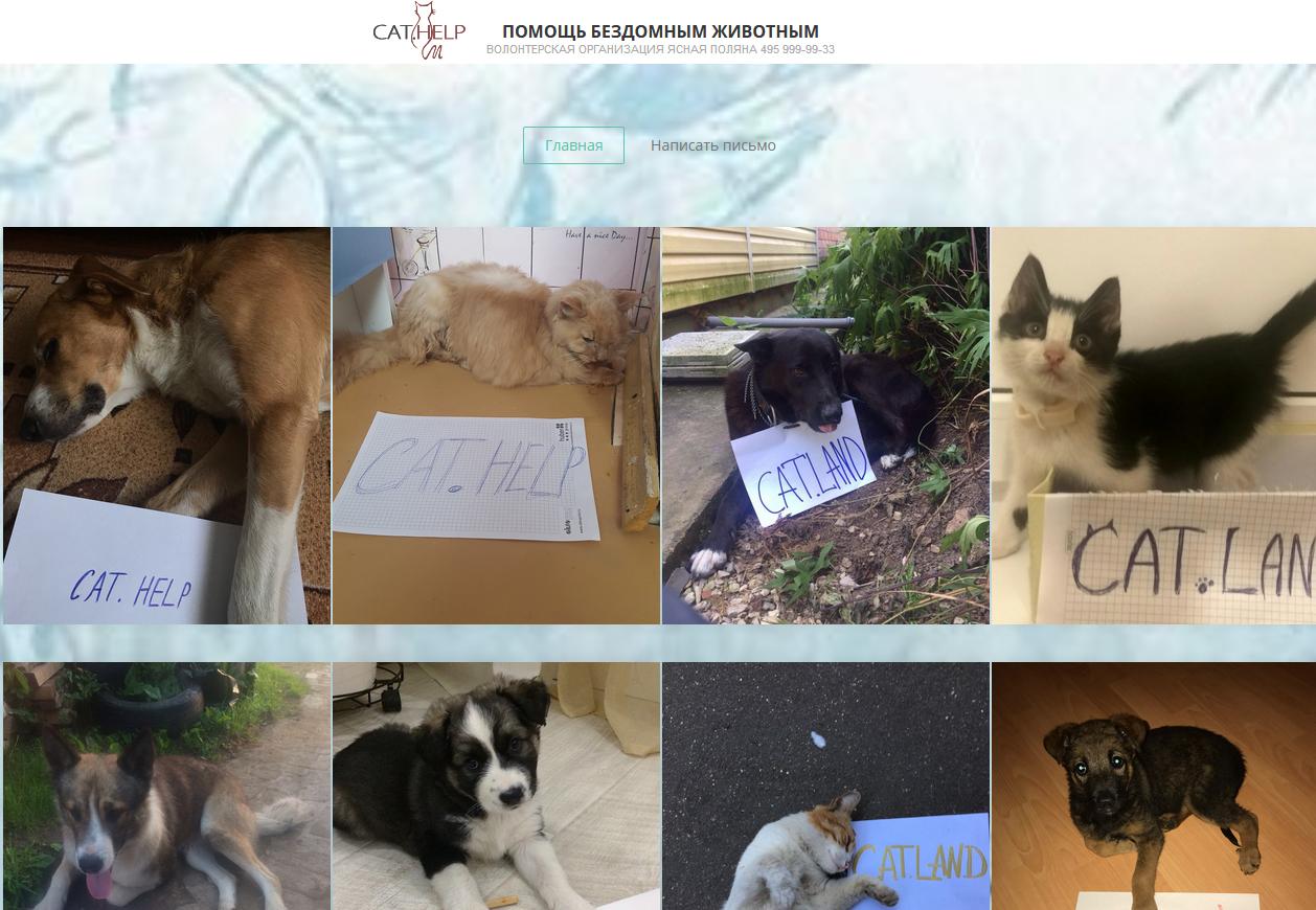 логотип для сайта и группы вк - cat.help фото f_57259d9f3ac8652e.jpg