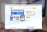 "Landing Page ""Веб-студия White Bee"""