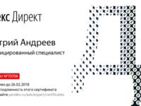 Яндекс. Директ настройка