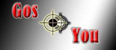 Логотип, фир. стиль и иконку для социальной сети GosYou фото f_507c14a92e0a0.jpg