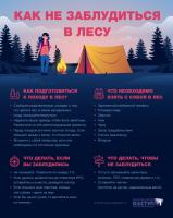 Инфографика Как не заблудиться в лесу