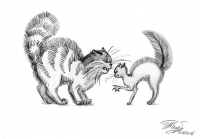 Жили-были Кот и Кошка.3