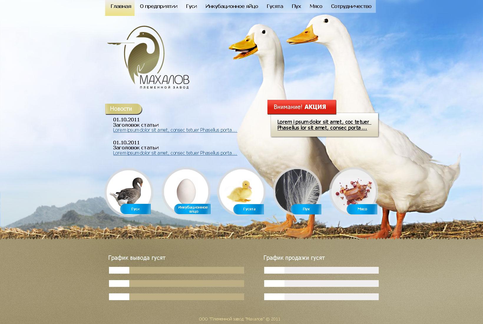 Редизайн сайта. фото f_4e8a35bfe72ce.jpg