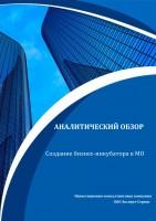 Аналитический обзор по созданию бизнес-инкубатора в МО