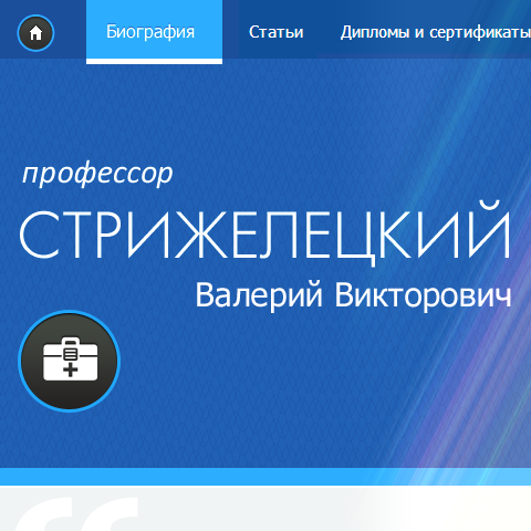 Сайт профессора Стрижелецкого В.В.
