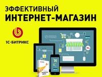 Комплексная разработка прибыльного интернет-магазина