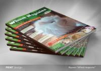 "Журнал ""Wheeek Magazine"""