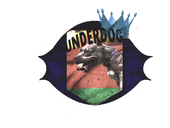 Футбольный клуб UNDERDOG - разработать фирстиль и бренд-бук фото f_1205caf716a655a3.jpg