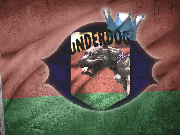 Футбольный клуб UNDERDOG - разработать фирстиль и бренд-бук фото f_2285caf71744433d.jpg