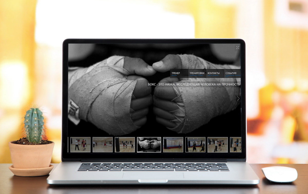 Sport-boxing