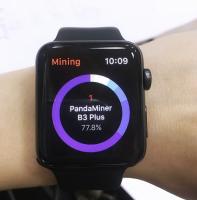 Разработка приложения под Apple Watch для майнингового гиганта Giga Watt.