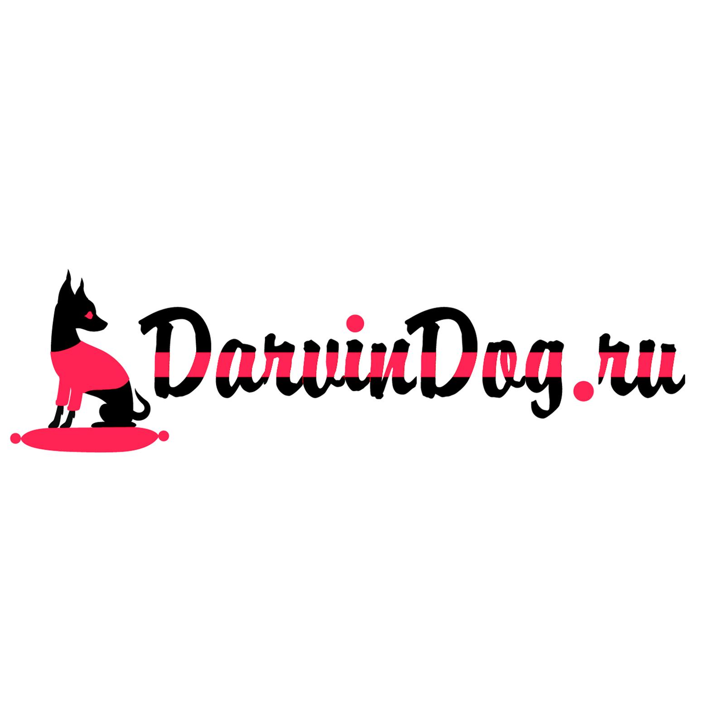 Создать логотип для интернет магазина одежды для собак фото f_396564b397608d0f.jpg