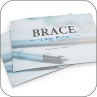 """Презентация для Юридической фирмы """"BRACE"""""""