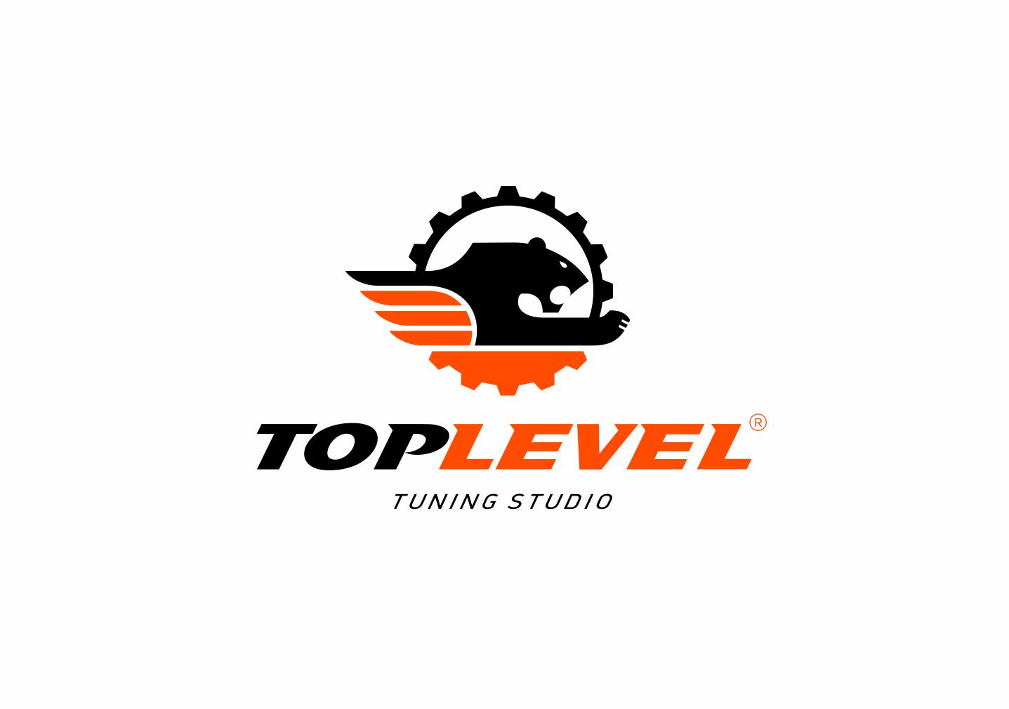 Разработка логотипа для тюнинг ателье фото f_1245f389b1431a2a.png