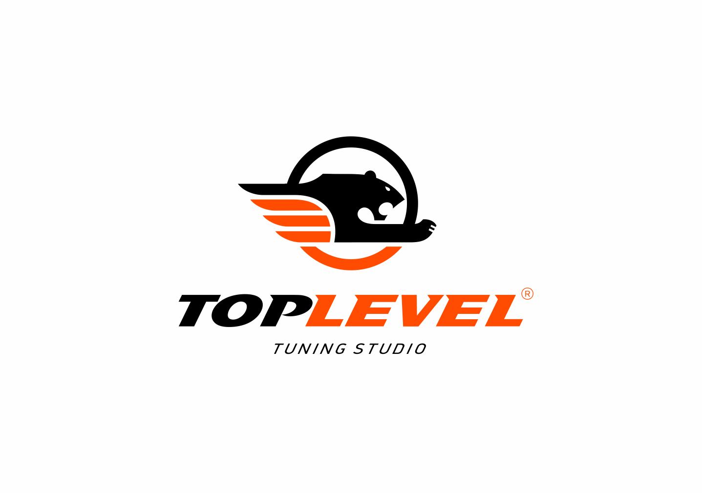 Разработка логотипа для тюнинг ателье фото f_1965f37bb863e166.png