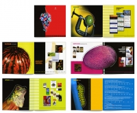 Буклет услуг дизайн-бюро